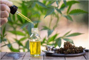 Benefits-Of-Hemp-Seed-Oil.jpg